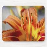 Mousepad Lily