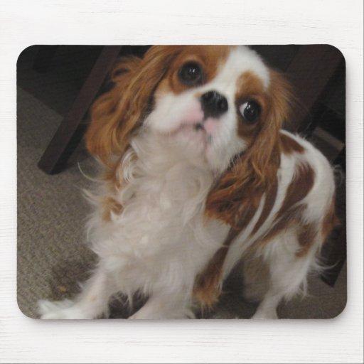 Mousepad lindo arrogante del perro de perrito de r