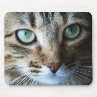 Mousepad lindo del gato