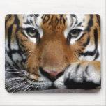 Mousepad malayo del tigre #3 tapetes de ratones