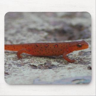 Mousepad manchado rojo del Newt