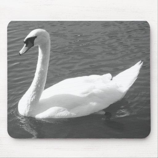Mousepad o Mousemat - cisne en negro y blanco Alfombrilla De Ratones