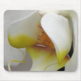 Mousepad o Mousemat - orquídea