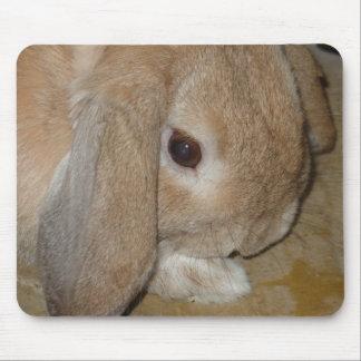 Mousepad or Mousemat - Lop Eared Dwarf Rabbit