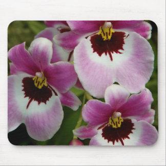 Mousepad - orquídea de pensamiento