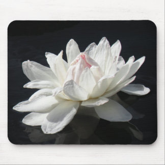 Mousepad, Paper White Water Lily Mouse Pad
