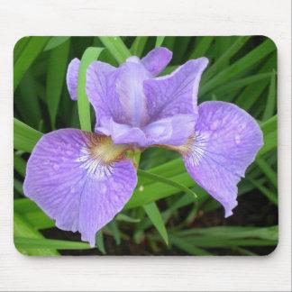 Mousepad púrpura del lirio/del iris alfombrilla de ratón