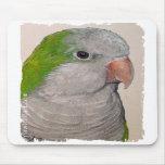Mousepad - Quaker Parrot