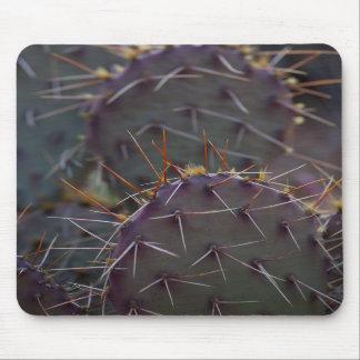 Mousepad que ofrece el cactus del oído de la mula tapetes de ratones