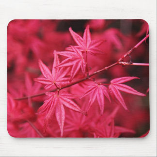 Mousepad-Red Maple Tree