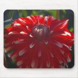Mousepad rojo de la flor tapete de ratón