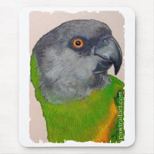 Mousepad - Senegal Parrot