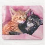 mousepad soñador de los gatitos alfombrilla de ratones
