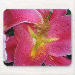 Mousepad, Stargazer lilly Tapete De Raton