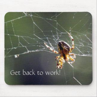 Mousepad - Sunlit spider