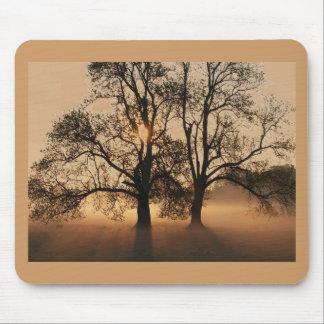 Mousepad, Tree