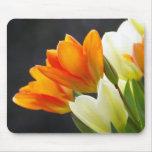 Mousepad, tulipanes, flores de la primavera tapetes de ratón