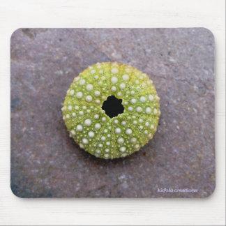 mousepad - urchin