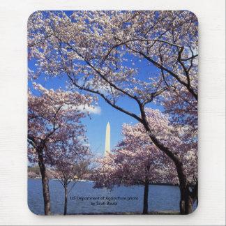Mousepad / Washington Monument Amid Cherry Trees