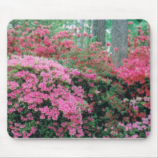 Mousepad with a Spray of Pink Azaleas