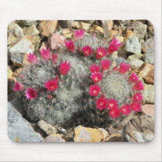 Mousepad with Blooming Cactus