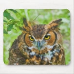 Mousepad with Great Horned Owl
