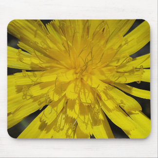 Mousepad yellow bloom center
