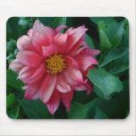 Mousepads rosados del flor de la flor de la dalia  tapetes de raton