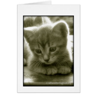 Mouser 3 Card