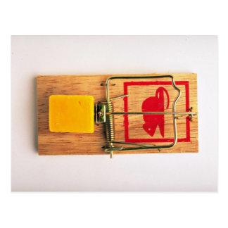 Mousetrap Postcard