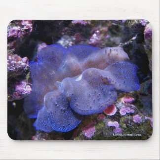mouspad - baby giant clam mouse pad