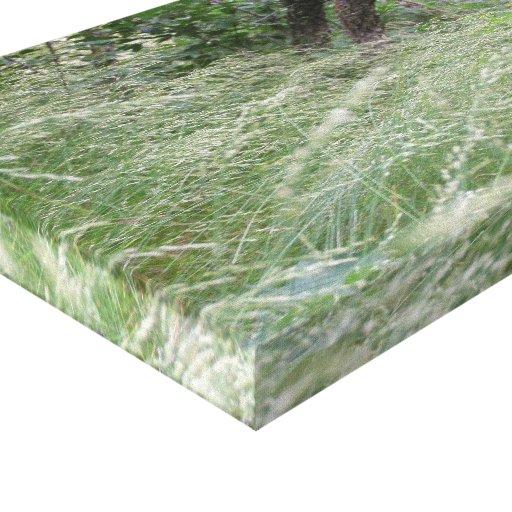 Moutain Drive Wind-blown Grass Canvas Print