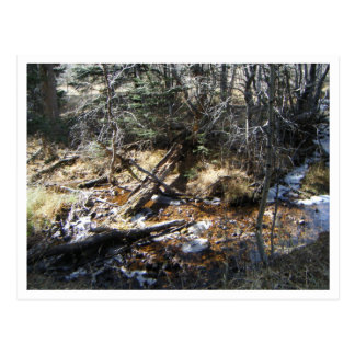 Moutain Stream Postcard