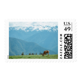 moutains postage