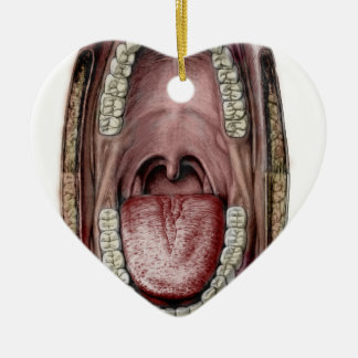 mouth anatomy ceramic ornament