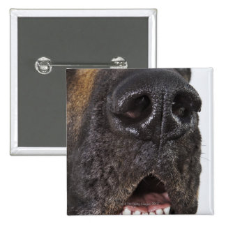 Mouth of Great Dane, close-up 2 Inch Square Button