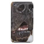 Mouth of Great Dane, close-up Barely There iPod Case