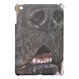 Mouth of Great Dane, close-up iPad Mini Covers