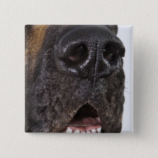 Mouth of Great Dane, close-up Pinback Button