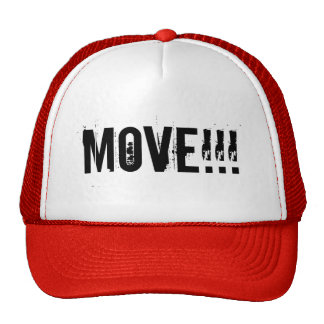 move mesh hat