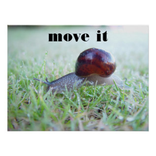 Move It Poster at Zazzle