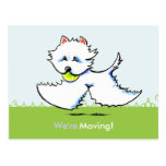 Moved Moving Westie New Address Announcements Post Cards