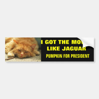 Moves Like Jaguar Pumpkin for President Bumper Sticker