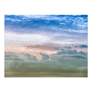 Moving Forward Bird Migration Team Inspiration Photographic Print