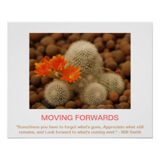MOVING FORWARDS demotivational poster