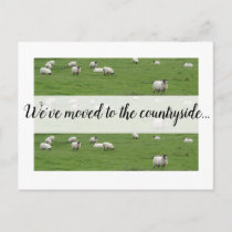 Moving to the countryside, new home sheep postcard