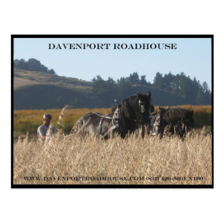 Mowing hay with draft horses in davenport Ca Postcard