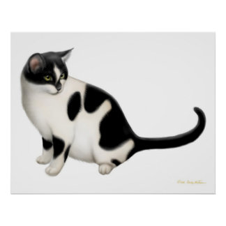 Moxie la impresión del gato del smoking póster