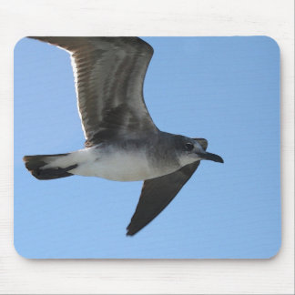 MP 6482 Gull 1 WC Mouse Pad