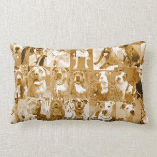 MPR Dog Pillow